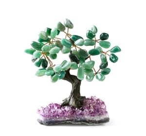 feng shui items for good luck: feng shui money tree!