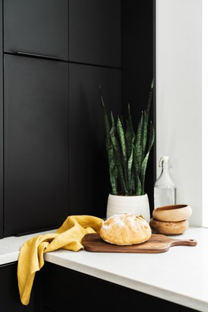 feng shui health tip: add plants
