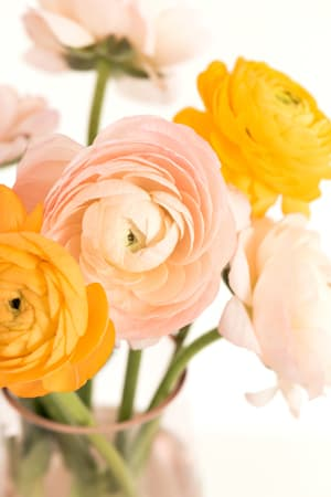feng shui: add fresh flowers for spring cleaning bliss