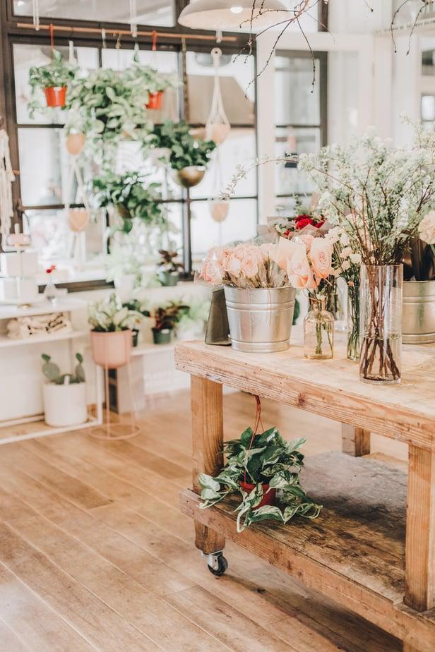 choosing indoor plants feng shui