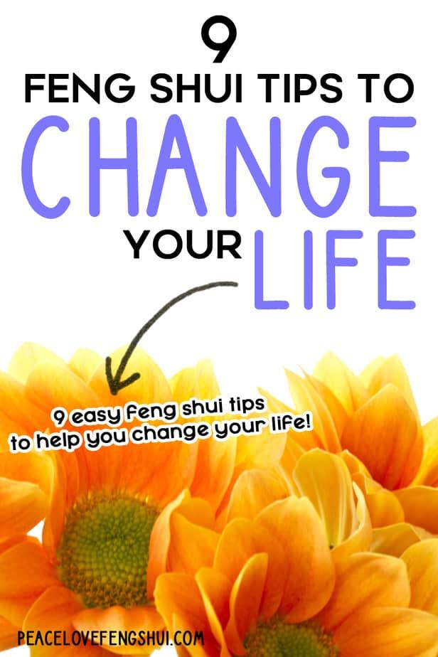 easy feng shui tips change life